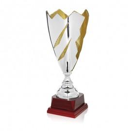 Trofeo bicolor plata y oro