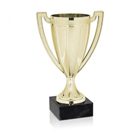 Trofeo minicopa dorada